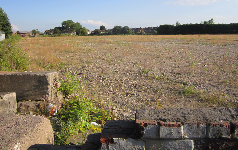 Brownfield_site_near_Cromwell_Road_Ellesmere_Port_(87).jpg